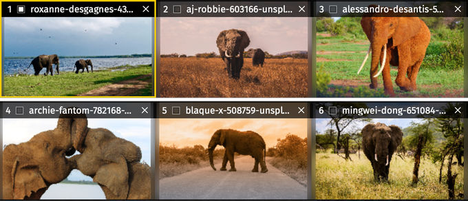 Multiple photo resizing with Raw.pics.io