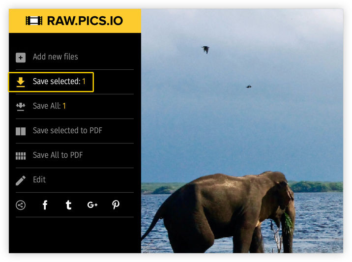 Learn how to resize photo with Raw.pics.io