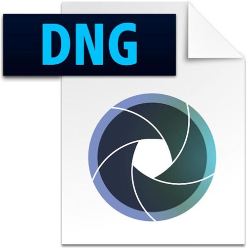 What is DNG?